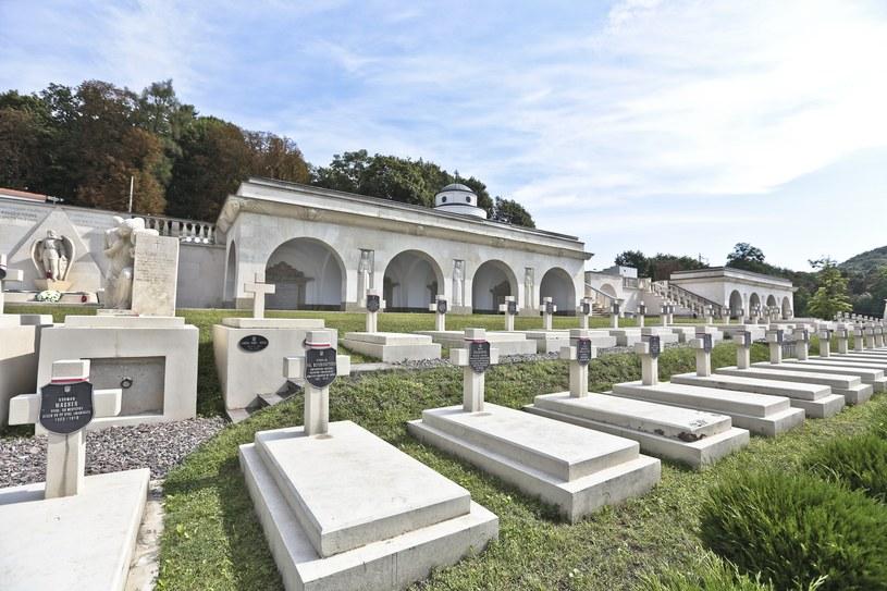 Cmentarz Orląt Lwowskich w tym roku nie zostanie wyremontowany /Piotr Jędzura /Reporter