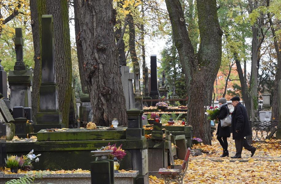 Cmentarz Powązkowski w Warszawie /Radek Pietruszka /PAP/EPA