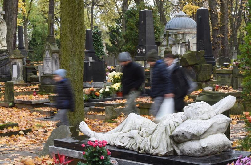 Cmentarz Powązkowski w Warszawie /Radek Pietruszka /PAP