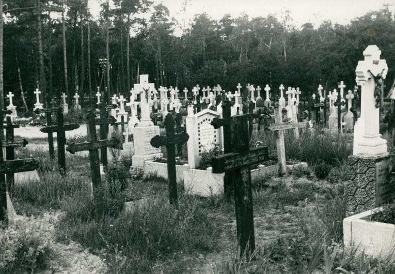 Cmentarz w Jastarni. Fotografia z 1935 roku /domena publiczna