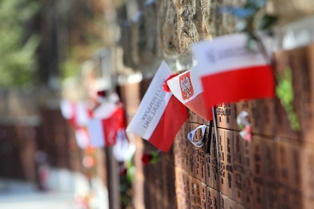 Cmentarz w Katyniu /J. Kucharzyk /East News