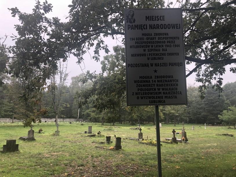 Cmentarz w Lublińcu. Fot. Olivia Kortas /Deutsche Welle