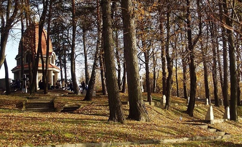 Cmentarz wojenny nr 368 na Jabłońcu, w oddali kaplica-mauzoleum Othmara Mühra /Małgorzata Żyłko /INTERIA.PL