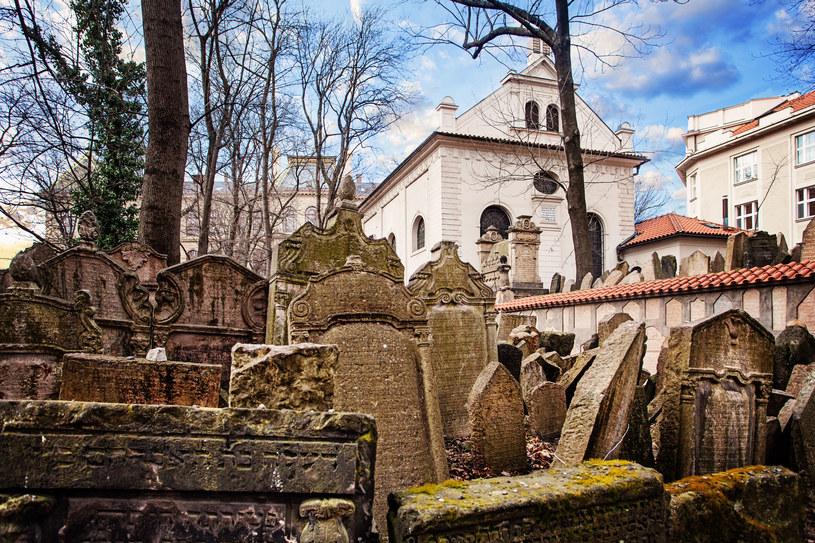 Cmentarz Żydowski na Josefovie jest najstarszym zachowanym kirkutem /123RF/PICSEL