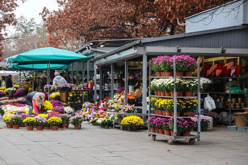 Cmentarze były nieczynne we Wszystkich Świętych; decyzja ta naraziła sprzedawców kwiatów na duże straty /Wojtek Laski /East News