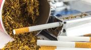 Co dwunasty palący Polak kupuje papierosy w nielegalnych źródłach