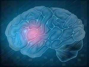 Co internet robi z naszymi mózgami?
