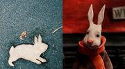Co króliki robiły w Berlinie?