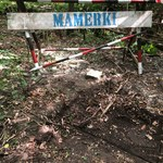 Co kryje się pod tajemniczym włazem w bunkrach w Mamerkach?