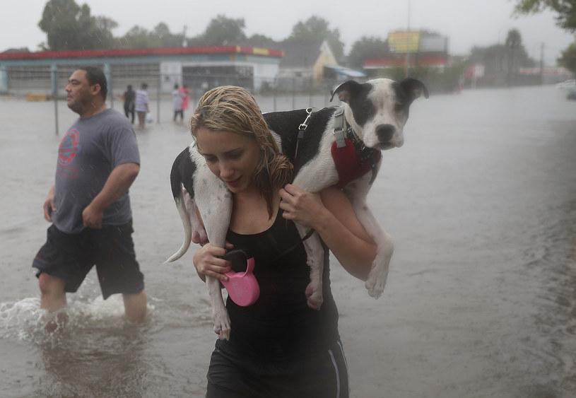 Co najmniej dziewięć osób zginęło po tym, jak nad Teksasem przeszedł huragan Harvey /Joe Raedle  /AFP