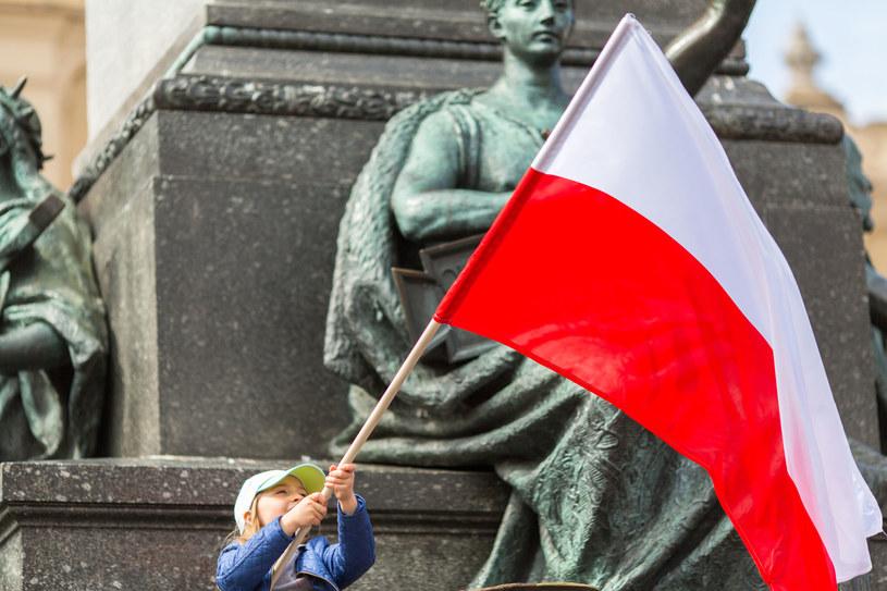 Co obiecuje nowy nacjonalizm? /123RF/PICSEL