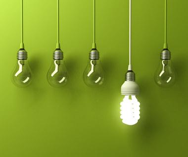 Co przyniesie Zielony Ład? Wyzwania dla europejskiego przemysłu