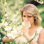Co pyli na wiosnę i jak radzić sobie z alergią na pyłki?