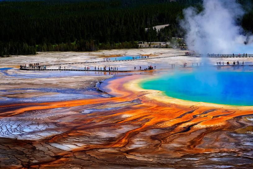 Co się dzieje w Yellowstone? /123RF/PICSEL