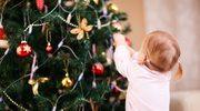 Co symbolizuje bożonarodzeniowa choinka?