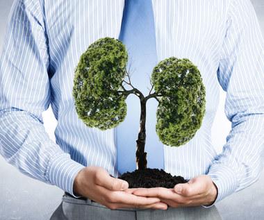 Co to jest odma płucna?