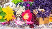 Co warto wiedzieć o homeopatii
