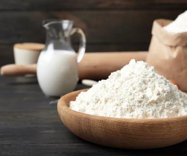 Co warto wiedzieć o mleku w proszku?