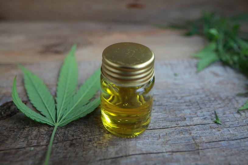 Co zawiera olej konopny? /©123RF/PICSEL