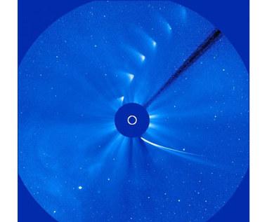 Co zostało po komecie ISON? Zaczynają się poszukiwania