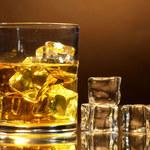 Co zyskasz rezygnując z alkoholu?
