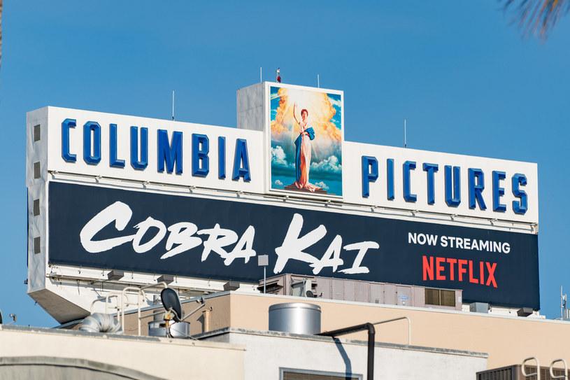 """Cobra Kai"" /AaronP/Bauer Griffin /Getty Images"