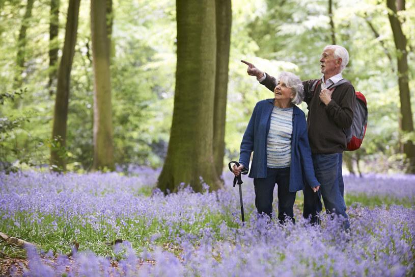 Codzienne spacery mogą zmniejszyć ból towarzyszący chorobie zwyrodnieniowej /123RF/PICSEL