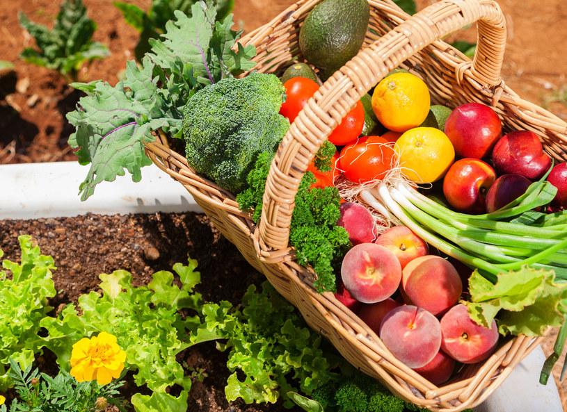 Codziennie jedz 5 porcji warzyw i owoców /123RF/PICSEL
