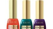 Colour Show