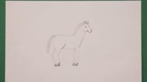 ¿Cómo dibujar un caballo?