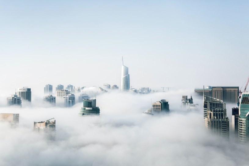 Coraz więcej firm deklaruje, że wykorzystuje możliwości cloudowe w swojej działalności /materiały promocyjne