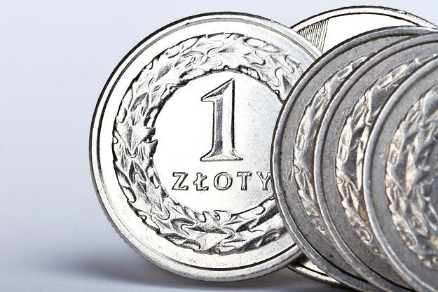 Coraz więcej gotówki w oszczędnościach Polaków /©123RF/PICSEL