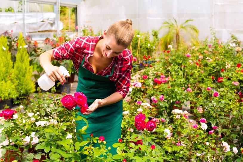 Coraz więcej ofert zatrudnienia skierowanych jest bezpośrednio do kobiet /123RF/PICSEL