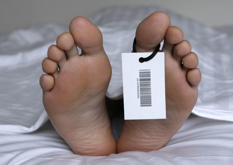 Coraz więcej osób za życia przeznacza swe ciała dla trupich farm /123RF/PICSEL
