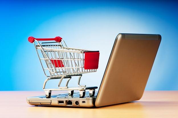 Coraz więcej Polaków korzysta z internetowych sklepów /©123RF/PICSEL