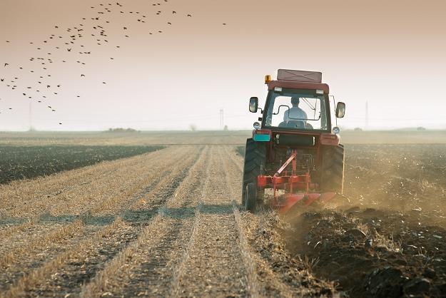 Coraz więcej rolników stara się o zwrot podatku /©123RF/PICSEL