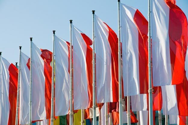Coroczne rozliczenie PIT to dobry moment, by zastanowić się, ile kosztuje nas państwo polskie /© Panthermedia