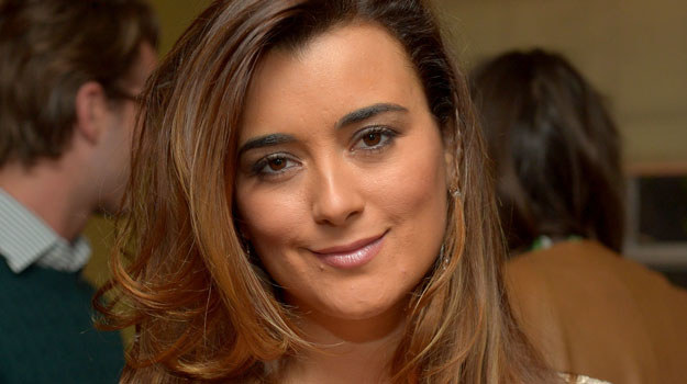Cote de Pablo /Charley Gallay /Getty Images