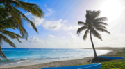 Cozumel - plaże, rafy, cuda natury i drinki