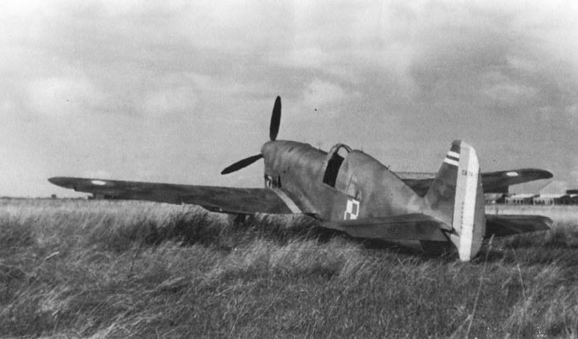 CR.714 w polskich barwach /Wikimedia Commons /INTERIA.PL/materiały prasowe