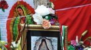 Cudowny wizerunek Matki Boskiej na drzewie?