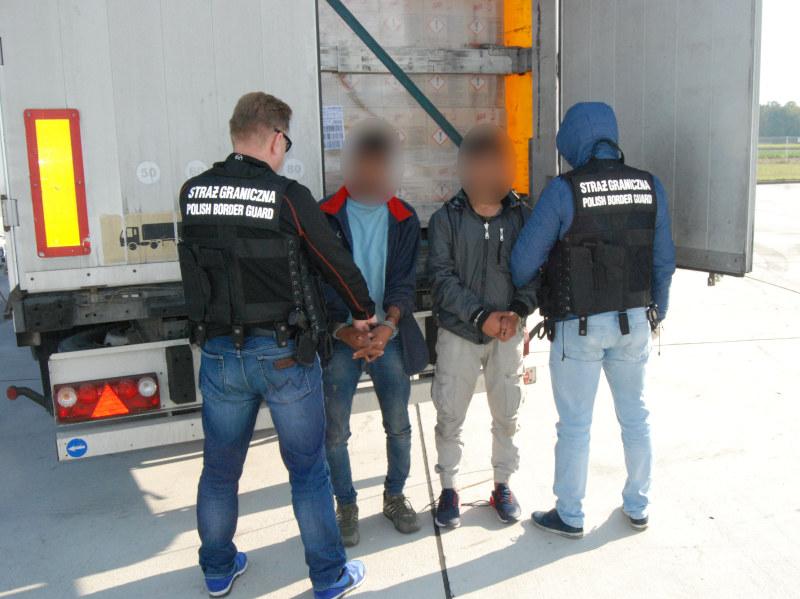 Cudzoziemcy ukryli się w ciężarówce /Straż Graniczna /Straż Graniczna