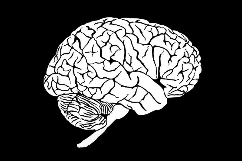 """Ćwiczenia mózgu mogą zwiększyć jego """"wydajność"""" /© Panthermedia"""