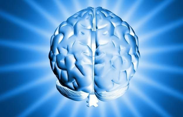Cyfrowa mapa mózgu zbliża się wielkimi krokami  fot.  Artem Chernyshevych /stock.xchng