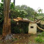 Cyklon Fani nadciąga nad Indie. Zagraża 100 milionom ludzi