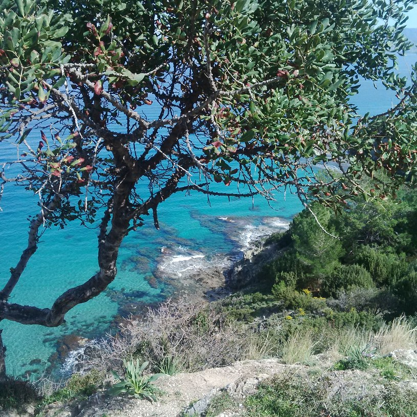 Cypr - nie brakuje tu zachwycających widoków /Magdalena Janczura /Styl.pl