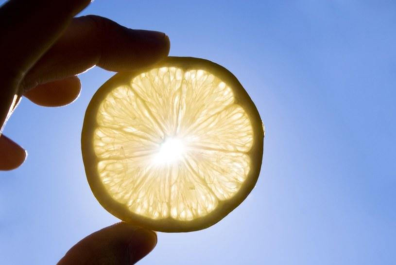 Cytryna jest bogata w witaminę C /123RF/PICSEL