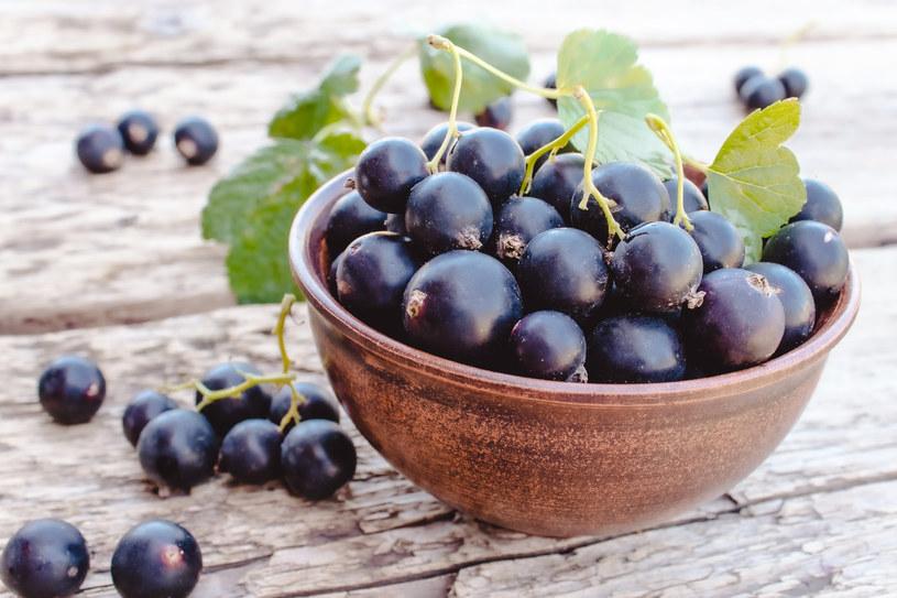 Czarna porzeczka jest bardzo cennym w witaminę C owocem /123RF/PICSEL