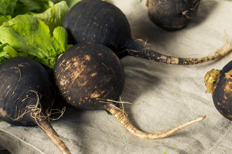 Czarna rzepa obfituje w szereg cennych dla zdrowia składników /123RF/PICSEL