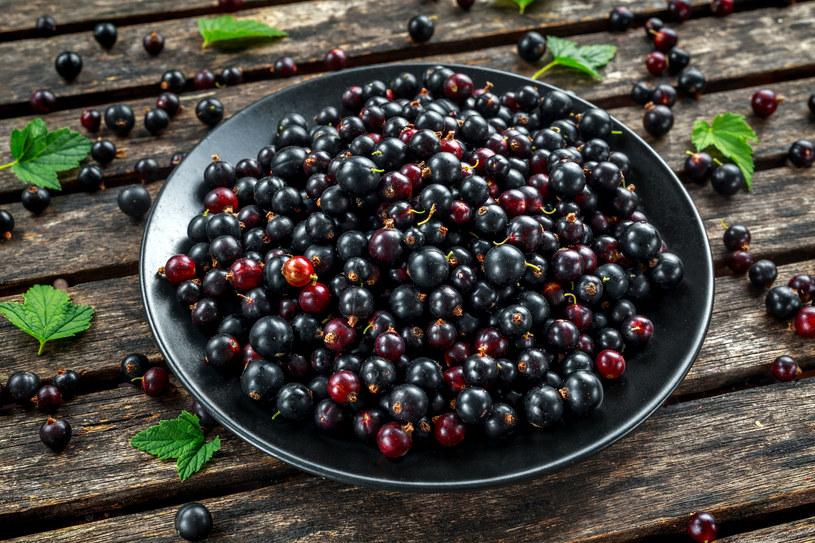 Czarne porzeczki redukują poziom cholesterolu i cukru we krwi /123RF/PICSEL
